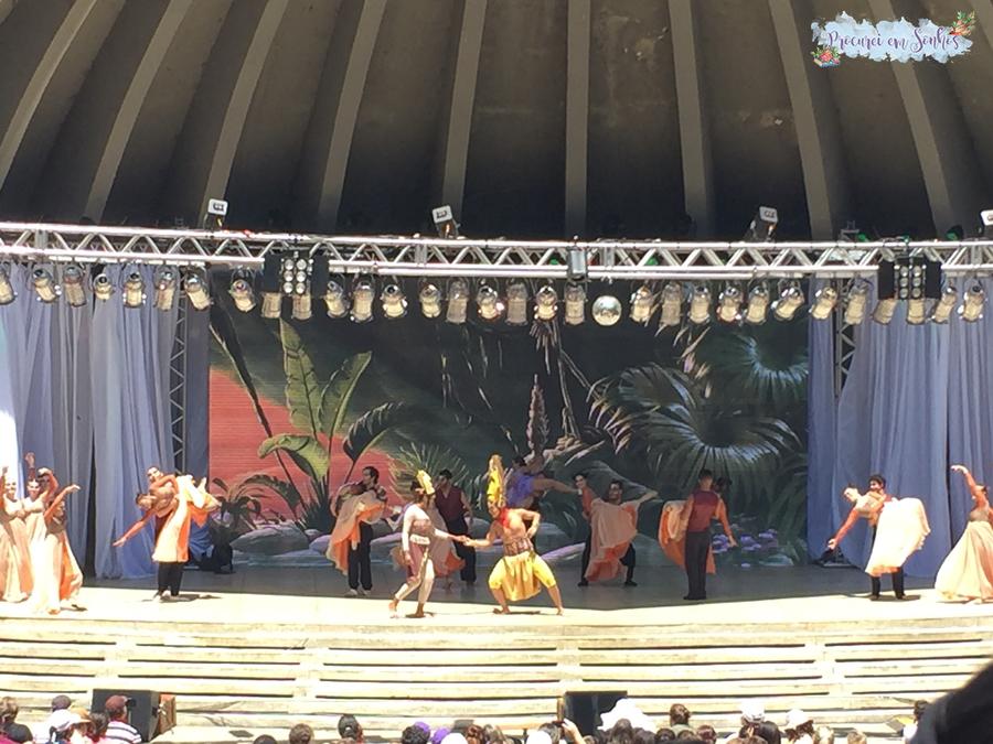 Musical Rei Leão